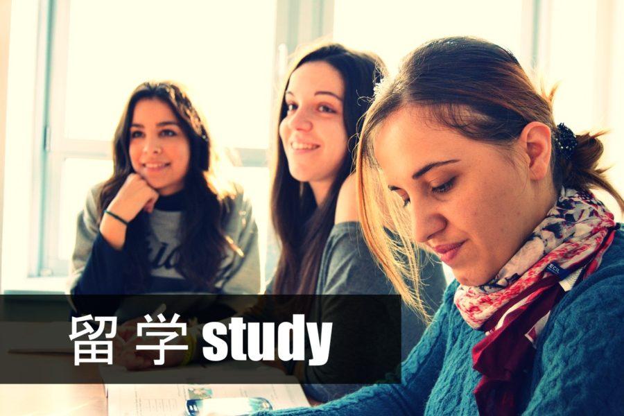 study 留学